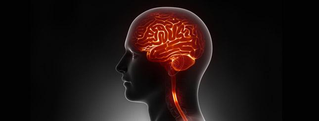 Lässt Diabetes das Gehirn schrumpfen?