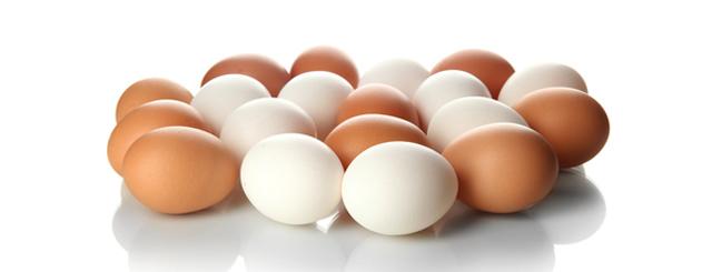 Mythos oder nicht? Das Ei als Cholesterinbombe