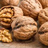 Walnüsse: Power-Snack für eine gesunde Darmflora?