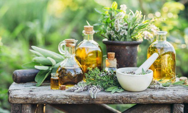 Phytotherapie für den Darm